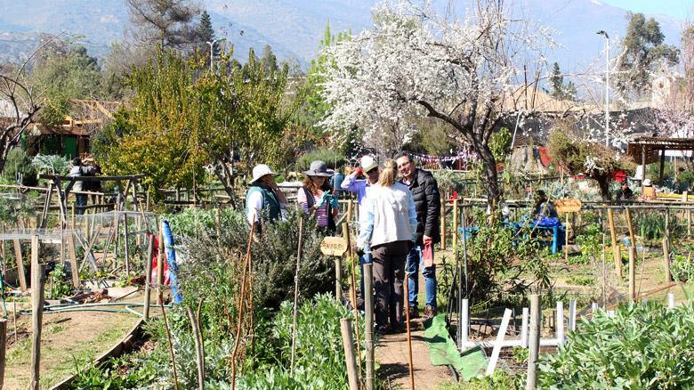 Así celebramos el 17° aniversario de las Huertas Urbanas