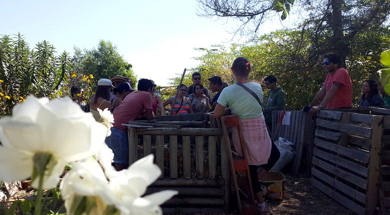 Programa de Compostaje y Lombricultura Domiciliaria